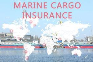Cargo Insurance Types